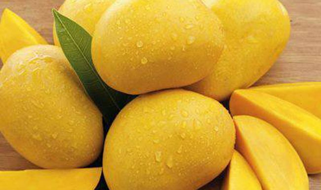 Maharashtra mango export doubles this season