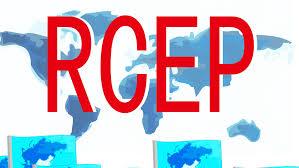 ആർസിഇപി വ്യാപാരക്കരാറിൽ നിന്ന് കേന്ദ്രസർക്കാർ പിന്മാറണം: വി സി.സെബാസ്റ്റ്യൻ