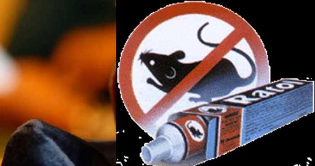 ടൂത്ത് പേസ്റ്റാണെന്ന് കരുതി എലിവിഷമെടുത്ത് പല്ല് തേച്ച വീട്ടമ്മ മരിച്ചു; ടൂത്ത് പേസ്റ്റും എലിവിഷത്തിന്റെ ട്യൂബും അടുത്തടുത്തടുത്ത് ഇരുന്നത് അപകടമായെന്ന് നിഗമനം