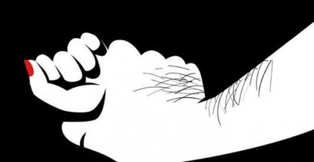 ഒരു സ്ത്രീയോട് പെരുമാറുവാൻ കേരളം എത്രയോ ഭേദമെന്ന് തോന്നിയ ദിവസങ്ങളായിരുന്നു 2012ൽ ഡൽഹിയിൽ എനിക്കുണ്ടായ അനുഭവങ്ങൾ; ആദ്യത്തെ ഒരു ഫ്ളാറ്റിലെ ഉടമസ്ഥൻ ഒരു 35 വയസ്സ് തോന്നിക്കുന്ന ഒരാൾ ഇടയ്ക്കിടയ്ക്ക് വന്നു കതകിൽ മുട്ടുവാനും ശല്യം ചെയ്യുവാനും തുടങ്ങി; വല്ലാതെ ഭയം തോന്നിയ നിമിഷങ്ങളായിരുന്നു: ഡൽഹി ജീവിതകാലത്തെ അനുഭവങ്ങൾ പങ്കുവച്ച് ഡോ. ഷിനു ശ്യാമളൻ
